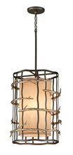 Troy F2883 - ADIRONDACK 3LT PENDANT ENTRY MEDIUM
